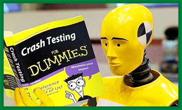crash test dummie to save you some pain